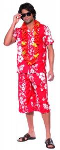 deguisement hawai homme